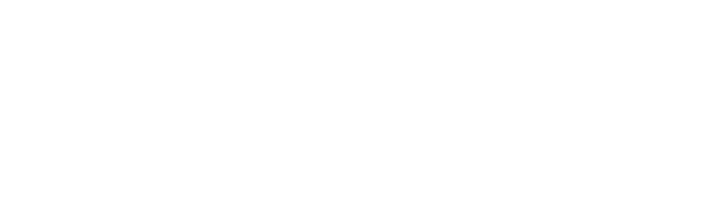 Logo FinWizer